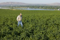 INSLEE UPDATES PROCLAMATION REQUIRING AGRICULTURAL WORKER TESTING