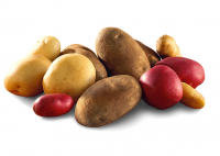 Potato News and Nutrition