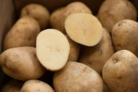 FARMERS DONATE TRUCK LOADS OF POTATOES