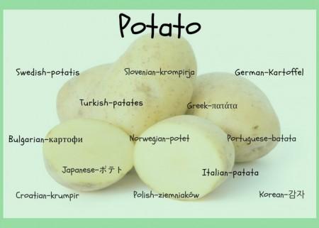 Potatoes Around the World